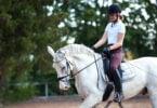 Federação Equestre
