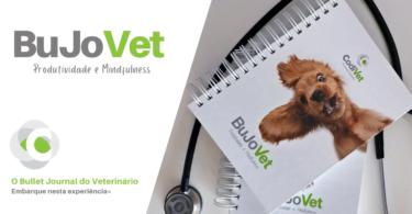 Codivet enviou 'bullet journal' para profissionais veterinários