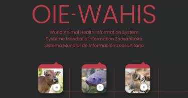 OIE cria plataforma para registo de dados sobre doenças animais