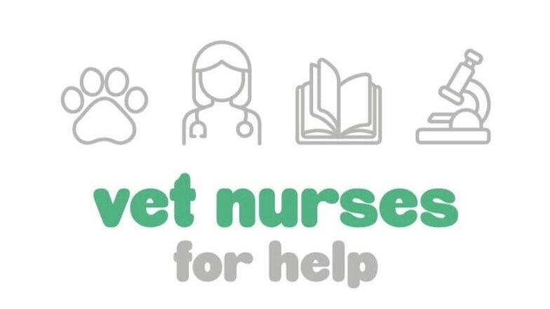 Duas enfermeiras veterinárias, Daniela Jacinto e Soraia Mendes, criaram o projeto Vet Nurses for Help, que quer dar a conhecer a profissão.