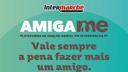 """A retalhista Intermarché lançou uma plataforma para promover a adoção de animais de associações de todo o País, a """"Amiga-me""""."""