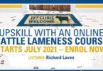 Universidade de Massey divulga curso sobre claudicação do gado