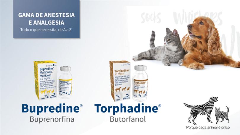 A Dechra afirma que voltou a ter toda a linha de opioides para uso veterinário em embalagens multidoses de 10 ml.