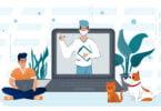 A Ordem dos Médicos Veterinários (OMV) vai assinalar o Dia Mundial da Medicina Veterinária com um vídeo que reflete a medicina veterinária.