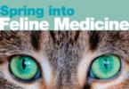 """A AAFP está a promover um encontro virtual de três dias sobre medicina felina, o """"Spring into Feline Medicine"""", que começa no dia 18 de abril."""