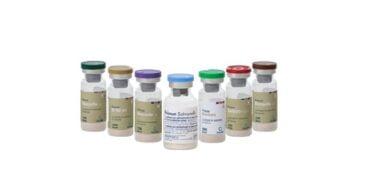 A vacina contra a Salmonella enteritidis recebeu a autorização para ser administrada no período de postura revela a Calier.