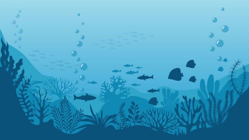 A Organização Mundial da Saúde Animal (OIE, na sigla em inglês)lançou uma estratégia global sobre a saúde dos animais aquáticos.
