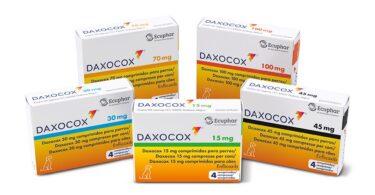 A Ecuphar lançou o Daxocox, que a empresa afirma ser o 1º e único AINE de administração semanal, para reduzir risco de breaktrough pain.