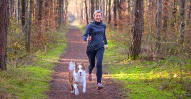 Um novo estudo mostrou que de todos os fatores, o exercício era a causa de 74% dos casos relatados de doenças relacionadas com o calor.