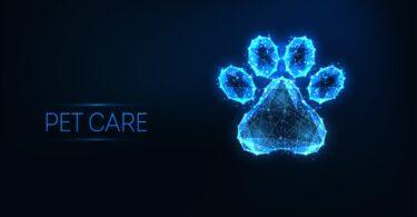 A MSD Animal Health criou a MSD Animal Health Intelligence, quer conectar os animais e as pessoas, através de tecnologias como a Big Data.
