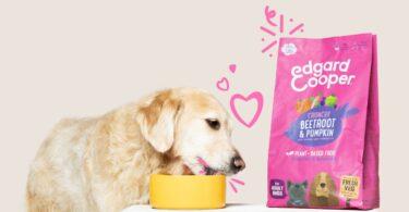AEdgard & Cooper, marca de ração animal belga, apresentou as suas primeiras receitas para alimentação canina à base de vegetais.