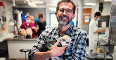 Joaquim Henriques, médico veterinário no Centre Hospitalier Vétérinaire Frégis, em Paris, França. Rubrica Veterinários Portugueses pelo Mundo. Portugal