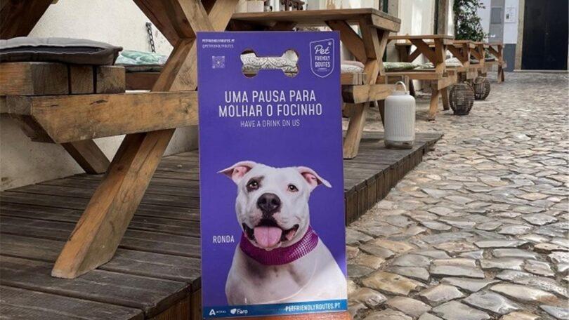 """A cidade de Faro já conta com uma rota de espaços """"pet-friendly"""" (amigos dos animais) em vários espaços públicos."""
