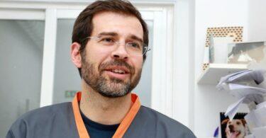 A VETERINÁRIA ATUAL entrevistou o especialista em oncologia veterinária, Joaquim Henriques, sobre mastocitomas.