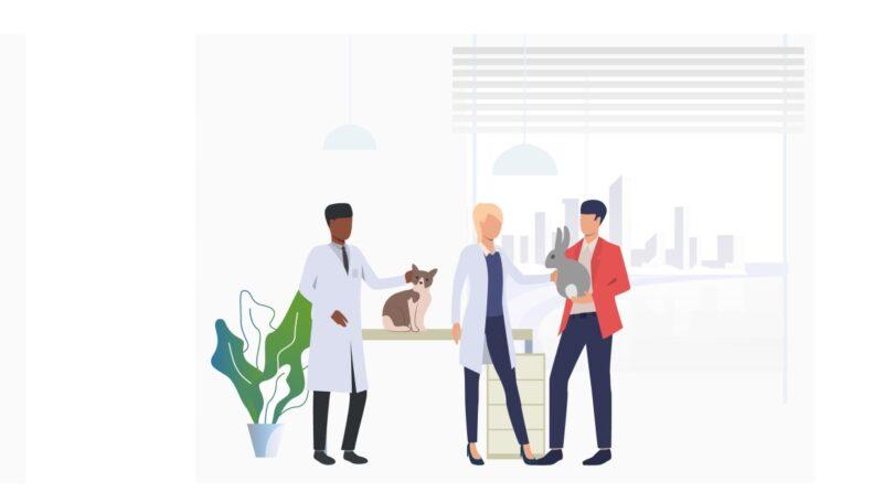 O Programa X-Innovation – Apresentação de ideias por especialistas, promovido pela Kimipharma, vai ter como tema o conceito One Health.