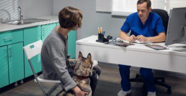 A WSAVA está a organizar um webinar gratuito que pretende ajudar os profissionais veterinários a comunicar com os titulares de animais.