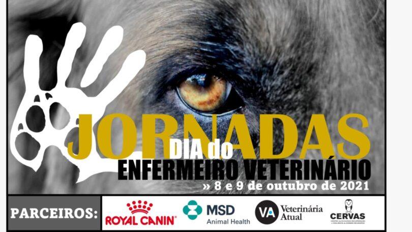 Os dias 8 e 9 de outubro vão ser marcados pelas Jornadas do Dia do Enfermeiro Veterinário, organizadas pela AEVP.