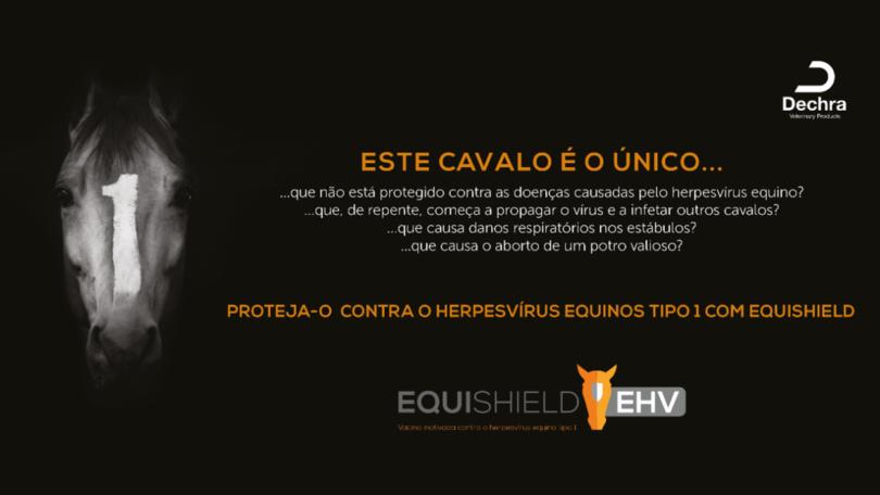 A farmacêutica Dechra anunciou a sua nova vacina contra o herpesvírus equino tipo 1 (EHV-1), a Equishield EHV, já disponível no mercado.