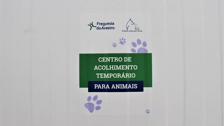A junta de freguesia do Areeiro apostou na criação de um Centro de Acolhimento Temporário para abrigar animais.